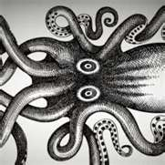 cephalopods_are_rad