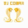 DJ Cobra UK