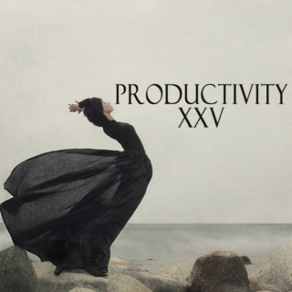 Productivity XXV