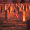 Recognition of the continuing spectre of war for Veteran's Day.
