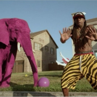 Purple Elephants & Tiger Pants