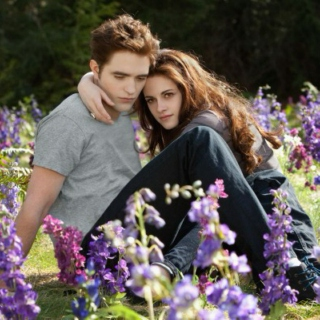 Songs from breaking dawn part 1 & 2