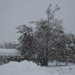 Snow In Folk Songs (Turkey)