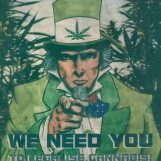The Reefer Chronicles Pt. II