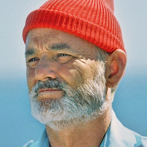 The Life Acoustic w/ Steve Zissou