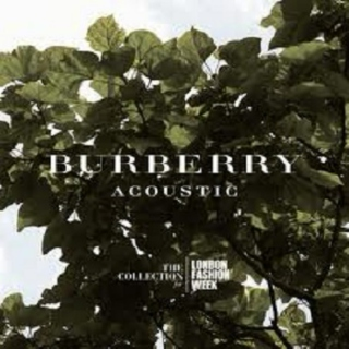 Burberry Acoustic
