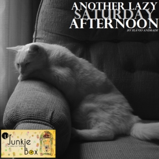 ANOTHER LAZY SATURDAY AFTERNOON (by Flavio Andrade)
