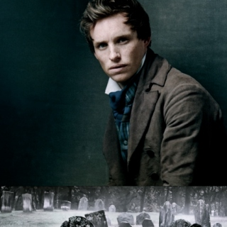 wait around for the dust to still; a marius pontmercy mix