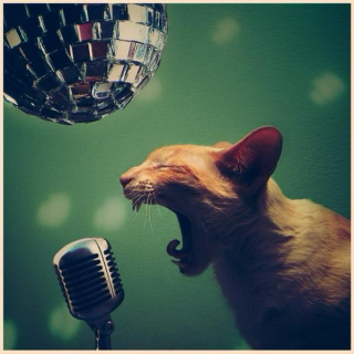 I Sing Anyway