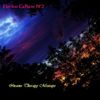 Electro Culture ( Book N°2 )