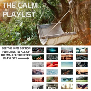 The Calm Playlist - An Electronica, Horizontal Disco, and Shoegaze Playlist