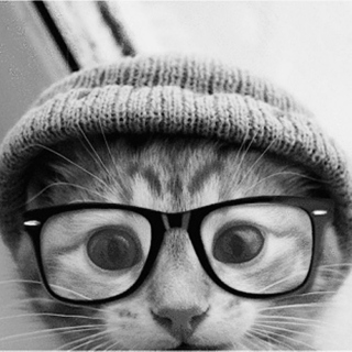 Hipster Kitty