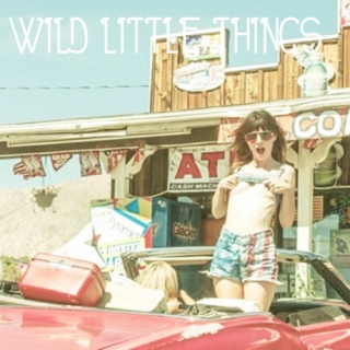 wild little things