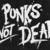 punk and its derivatives