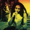 The Mystic Feel ( The Reggae Edition II)