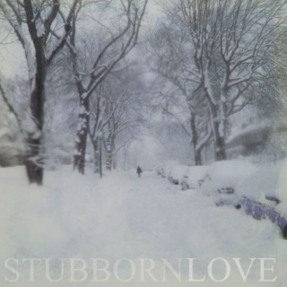 Stubborn Love