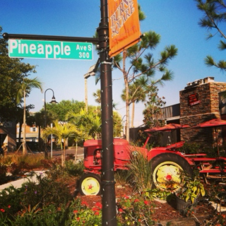 Pineapple Avenue