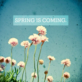 Here Comes The Spring