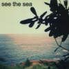 see the sea