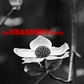 the NEARNESS of you