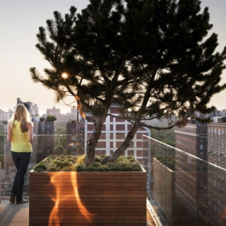 A Rooftop Patio Groove