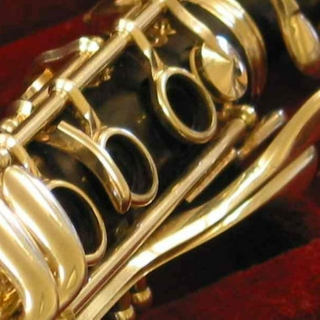 Woodwind instruments in classical music