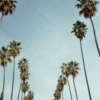 Indie Summer Mix
