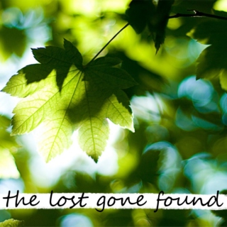 the lost gone found
