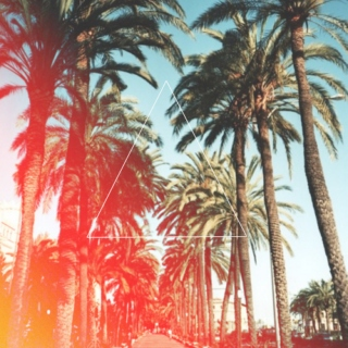 Palm Trees and Swimming pools ☯