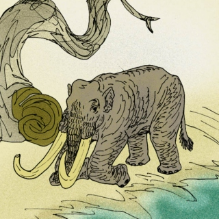 Space and Time and Mammoths