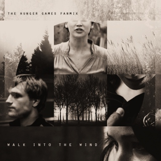 Walk into the Wind : The Hunger Games fanmix
