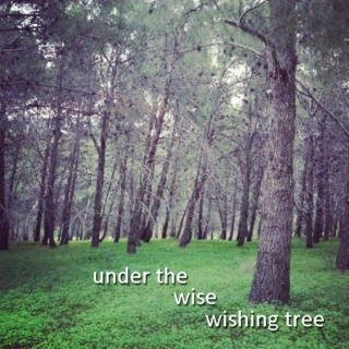 Under The Wise Wishing Tree