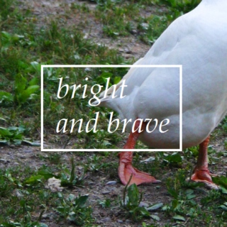 bright and brave