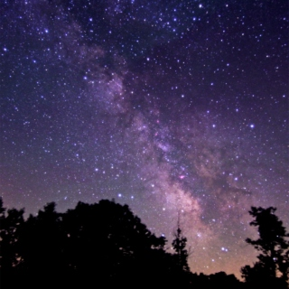 I Loved The Stars Too Fondly To Be Fearful Of The Night