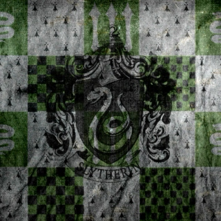 Slytherin House Mix