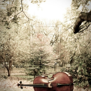 Hello Cello, Come Dream With Me