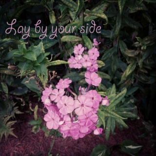 Lay by your side