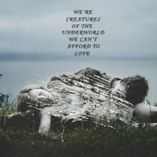 We Can't Afford To Love