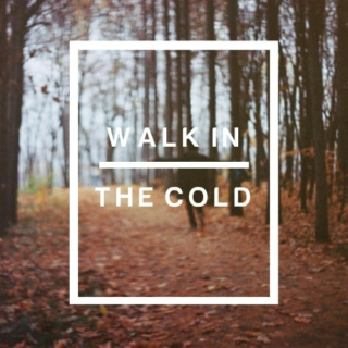Fall Collections; Walk in the Cold