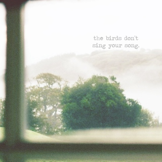 The birds don't sing your song.