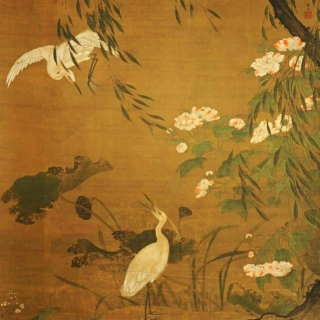thirty egrets in a quiet evening