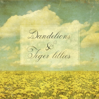 Dandelions & Tiger Lillies