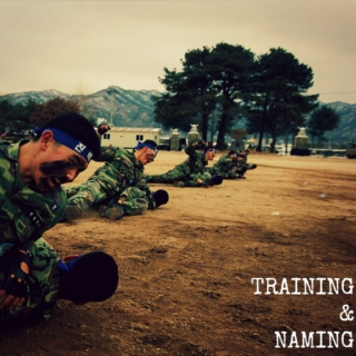 Training & Naming