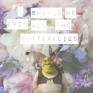 ♡ i should be over all the butterflies ♡ a shronkey playlist