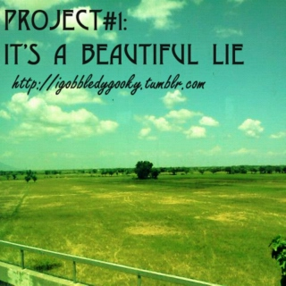 Project 1: Oh! It's a beautiful lie