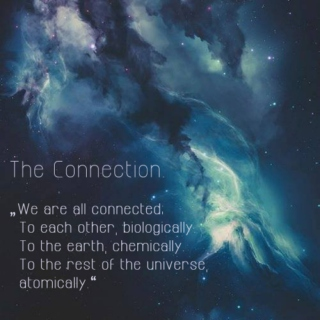 The Connection.