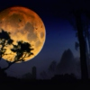 After the full moon.
