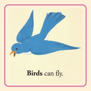 Birds can fly.