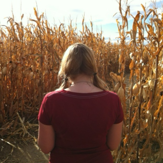 It's Fall...time for a corn maze.