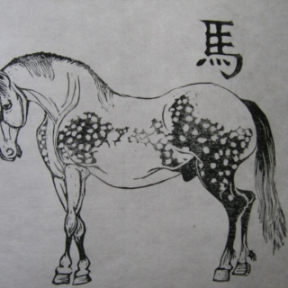 Year Of The Metal Horse